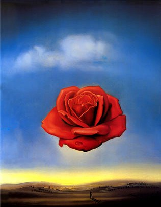 salvador_dali_the_meditative_rose1