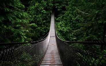 bridge-1024x640